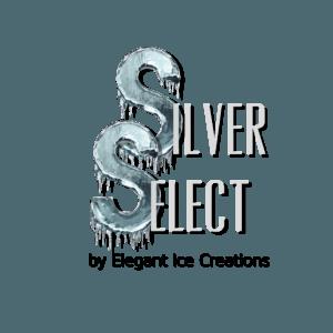 silver select Logo